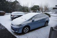 元日に初雪