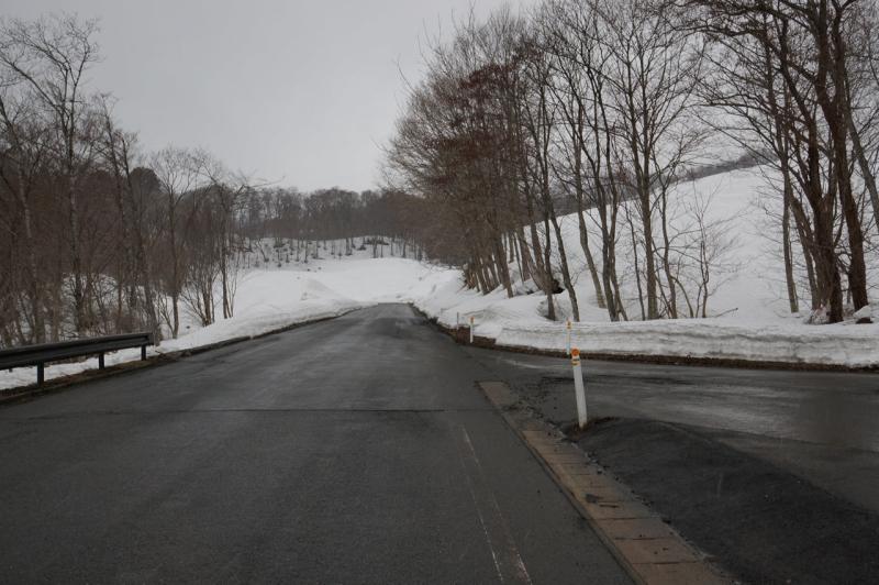 路面以外は真っ白