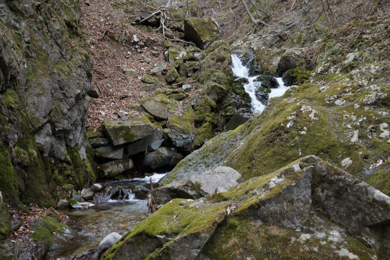 滝壺の脇の渓流
